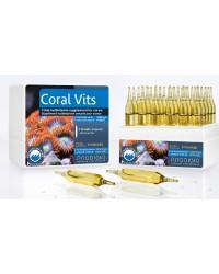 Coral Vits de Prodibio
