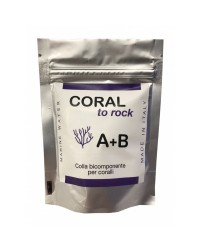 Coral to Rock de Xaqua