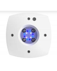 Aquaillumination AI Prime SOL
