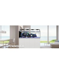 Waterbox Peninsula 3620