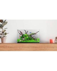 Waterbox Clear Mini 10 (sólo acuario)