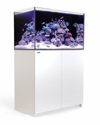 Red Sea Acuario Reefer 250