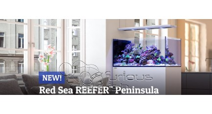 Nueva serie de acuarios Reefer Peninsula de Red Sea